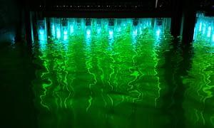 Newland UV rješenja