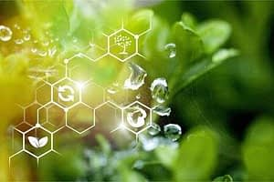 128709733 plants background with biochemistry structure